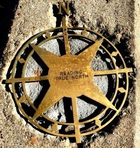 Kompass zarządczy, polityka zarządzcza